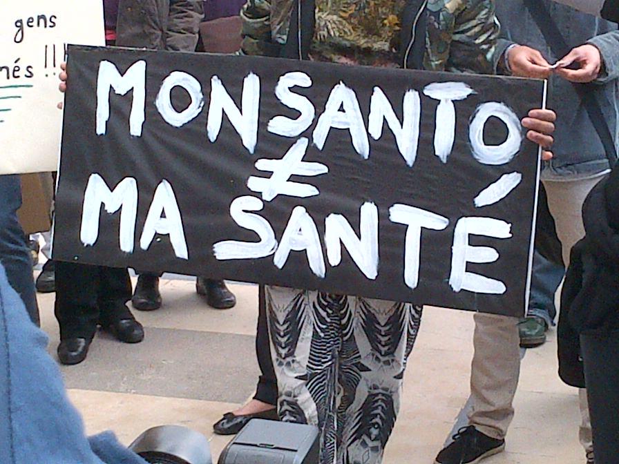 Objectif Transition à la marche mondiale contre Monsanton (mai 2013)