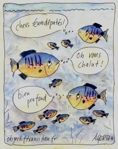 poissons-Achim-Gertz-Objectif-Transition-chalutage-en-eau-profonde-Bloom-Intermarche